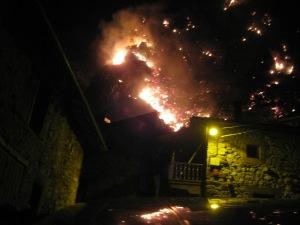 Incendio de Bejes. Enero del 14